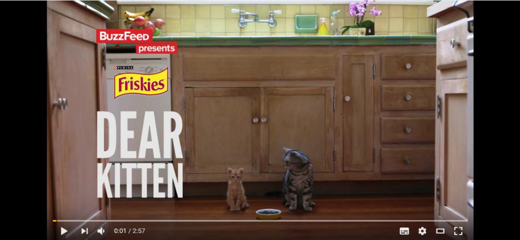 dear-kitten-youtube